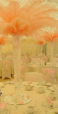 Wedding breafast ostrich feathers